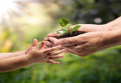 Ative o fluxo do dar e receber
